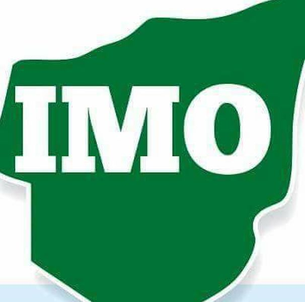 22 communities declare end to FGM in Imo - Nigeriannewsdirectcom